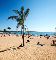 Beautiful Barcelona Beach   TOP 10 Free Things to See and Do in Barcelona
