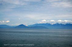 West Coast - LADYBUG COTTAGE PHOTOGRAPHY #6