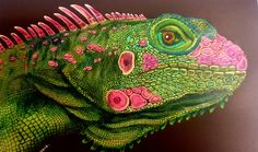 Intricate Ink Animals in Detail a Coloring Book by Tim Jeffs CBK002: Amazon.co.uk: Tim Jeffs: Books