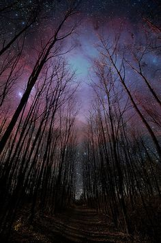 Nebulae. I'd love to live in a cottage tucked in this forest and fall asleep with this being the last thing I see.