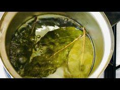 Niciun doctor nu știe despre asta, prepară o frunză de dafin și scapă de toate bolile! - YouTube Palak Paneer, Ethnic Recipes, Youtube, Food, Essen, Meals, Youtubers, Yemek, Youtube Movies