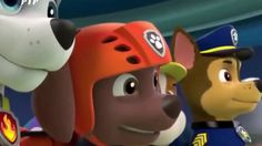 Animation Movies For Kids - Paw Patrol Full Episodes - Paw Patrol Cartoo...