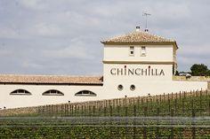 Contact us - Doña Felisa Winery - Chinchilla Red Wine - Ronda