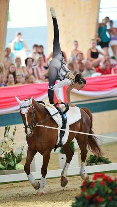 #Jump #Flexibilidad #Grey #Gris #Concurso #Ecuestre #vaulting #competitive #team #sport #gymnastics #dance #moves #horse #kisakiclub #caballo #movimiento #volteo #ecuestre #competitivo #gimnasia #cavalo