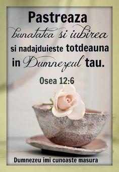 Un adevăr curat și intelep pentru noi toți! Bible Quotes, Bible Verses, Spirituality, God, Blessed, Style, Bible, Pictures, Dios