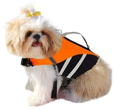 EXPAWLORER Ripstop Dog Life Jacket with Handle Adjustable Reflective Pet Puppy Saver Swimming Life Vest Coat Flotation Aid Buoyancy for Small and Large Dogs >>> Check out the image by visiting the link.