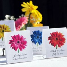 Gerber Daisy Wedding Favors - Assorted Colors