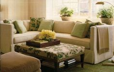 cool green living room pictures