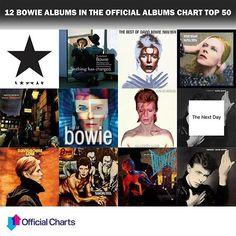 """19 BOWIE ALBUMS AND 13 SINGLES IN UK TOP 100   """"I never thought I'd need so many people...""""   19 Bowie albums and 13 singles in UK Top 100 as ★ enters UK chart at #1   David Bowie is the Starman of the Official Chart as the nation pays tribute to a music icon   Over half a million Bowie records sold in the UK this week   Bowie commands one quarter of the Official Albums Chart Top 40   See DavidBowie.com for more   #Blackstar  #imablackstar  #BlackstarAlbum  #BowieOCC"""