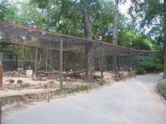 Mixed species exhibit at Caldwell Zoo, Tyler, TX