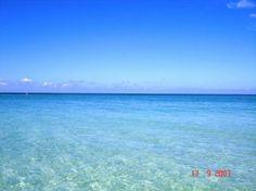 I Love sarasota,Florida | Lido Beach - Sarasota - Reviews of Lido Beach - TripAdvisor