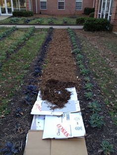 #Homestead - How to mulch a #garden withcardboard  (I wonder if this is better than using newspaper?)