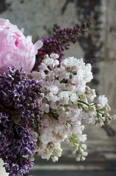 peonies and three kinds of lilacs