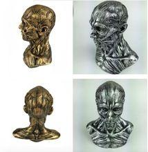Menschlichen Modell Bewegungsapparates Kopf Geschnitzten 1:3 Harz Handwerk Miniaturfiguren Dekoration Ornament Display Sammlung(China (Mainland))