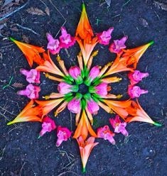 Flower Mandalas More