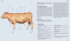CRAFTED MEAT by Die Gestalten Verlag // BOOK - THE Stylemate Cultural Crafts, English Food, On Today, Culinary Arts, Meat, Books, Culture, Drink, Beef