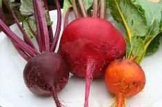 Beets!! For $0.60 a can you get a veggie with no bad fats and very low calories. Studies show beets help the body protect itself against cancer especially colon cancer. The also help protect against heart disease! Beets contain folic acid (for production of new cells), Calcium & Iron (women listen up), and are rich in Vitamins A and C. Beets have been shown to help clean your blood... eat up!