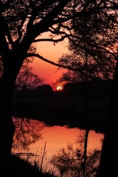 In the sunset Sunset Wallpaper, Dark Wallpaper, Wallpaper Backgrounds, Landscape Wallpaper, Beautiful Flowers Pictures, Cellphone Wallpaper, Iphone Wallpaper, Landscape Pictures, Beautiful Sunset