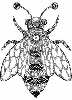 Bee by Janelle-Dimmett on DeviantArt Adult Coloring Book Pages, Coloring Books, Bee Drawing, Doodle Characters, Bee Illustration, I Love Bees, Outline Drawings, Bee Art, Insect Art