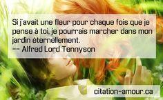Site officiel : http://www.citation-amour.ca/