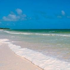 Located off the coast of Dunedin on Florida's Gulf Coast, Caladesi Island is famed for its unspoiled beach. Places In Florida, Florida Vacation, Florida Travel, Vacation Places, Florida Beaches, Beach Travel, Beach Trip, Vacation Spots, Vacations