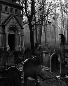 When darkness falls ♠️Love lies waiting.When darkness falls Gothic Horror, Arte Horror, Dark Gothic, Gothic Art, Dark Fantasy Art, Dark Art, Photo Post Mortem, Old Cemeteries, Graveyards