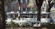 Savannah Trolley tours, also Riverboat lunch tour