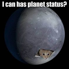 Funny Pluto Planet - Pics about space Funny Cats, Funny Animals, Pluto Planet, Girl Scout Camping, Light Side, Out Of This World, Girl Scouts, Best Funny Pictures