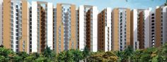 Wave Dream Homes an affordable Residential Apartment well situated at National Highway-24 Ghaziabad it offers 1 and 2 BHK Apartment with in your Budget, flats well designed under Experienced Interior designer.   http://www.allcheckdeals.com/project-wave-dream-homes-ghaziabad.php