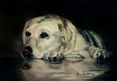 Yellow Labrador - original oil -- Anne Zoutsos