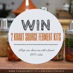 Giveaway! Win a Kraut Source Double Gourmet Fermentation Kit Set   Punk Domestics