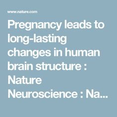 Pregnancy leads to long-lasting changes in human brain structure :  Nature Neuroscience :  Nature Research