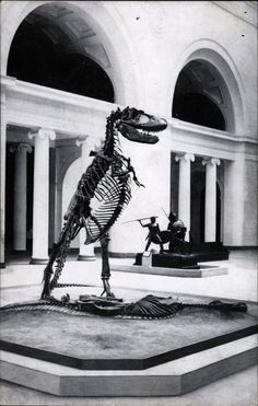 Postcard of Gorgosaurus (later determined to be a Daspletosaurus) at Chicago's Field Museum of Natural History.