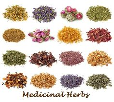 Herbal Medicine Tinctures, Elixirs, Infusions, Tonics and Recipes. Home remedies from Grandma's days.