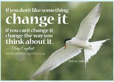 """If you don't like something, change it. If you can't change it, change the way you think about it."" - Mary Engelbreit  Website: www.studyenglishgenius.com Russian website : http://www.studyenglishgenius.com/ru/ E-mail: info@studyenglishgenius.com Skype ID: geniusenglishacademy Youtube: www.youtube.com/user/GeniusEnglishAcademy  TAGS: IELTS in the Philippines, TOEFL in the Philippines, English courses in the Philippines, Study in the Philppines, английский на филиппинах, IELTS на Филиппинах"