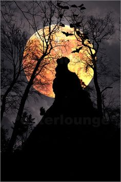Pirmin Nohr - Spooky rock bat eerie fantasy forest fullmoon nature night rock silhouette tree Fantasy & Mythology Silhouettes