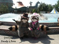 Hallo wij zijn Randy & Rosie! Komen jullie ons opzoeken in Attractie- & Vakantiepark Slagharen?