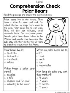 Comprehension Check - Polar Bears >> Part of the Polar Animal No Prep Activities Packet