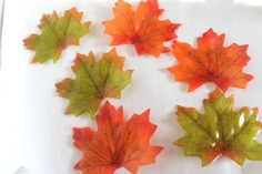 Maple Leaf Travel Soap Set from Nostalgie Soaps & Glycerin Soap Base, Soap Making, Bridal Shower, Leaves, Blog, Crafts, Soaps, Etsy, Jasmine