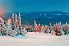 Ylläs, Finland | © submitted by: eahxoxo, thanks!