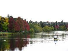 Fabulous Photo of Greenlake!