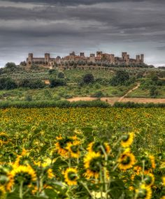 Monteriggioni - Tuscany - HDR by L.Clark Photography on Flickr.