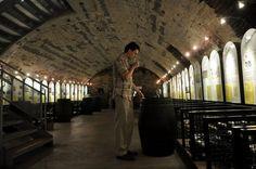 Mosel Wein Museum and Vinothek in Bernkastel-Kues:  Unlimited tastings of over 150 Mosel Valley wines