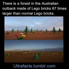 http://www.mymodernmet.com/profiles/blogs/lego-forest-broken-hill