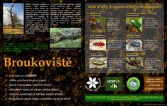 Výsledek obrázku pro broukoviště Garden, Cover, Books, Outdoor, Google, Outdoors, Garten, Libros, Lawn And Garden