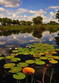 Namibian Wetlands