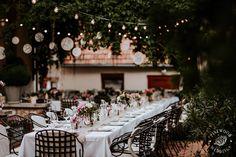 Betti&Toon's wedding decoration and lights