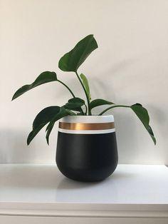 Painted Plant Pots, Painted Flower Pots, Vase Crafts, Cement Crafts, House Plants Decor, Plant Decor, Flower Pot Design, Pottery Painting Designs, Concrete Planters