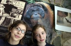 """Girl Scout cookies use a whole lot of palm oil…that is inextricably linked to rainforest destruction, violations of Indigenous rights & the extinction of endangered species like orangutans, tigers, elephants & rhinoceros. When 2 scouts, Rhiannon Tomtishen & Madison Vorva, learned of the impact…they started a campaign to get the Girl Scouts USA to switch recipes. As Tomtishen says, """"Rainforest destruction & orangutan extinction have no place in Girl Scout cookies or any other consumer…"""