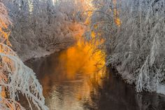 The breath of winter in the pictures 10